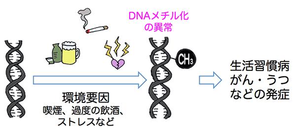 100人規模のエピゲノム(全DNAメ...