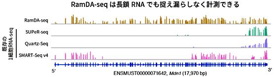 図4 長鎖RNAにおけるRNA計測の比較
