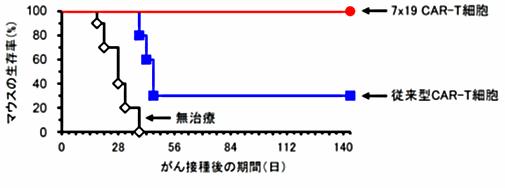 図1.固形がんに対する7x19 CAR-T細胞の治療効果