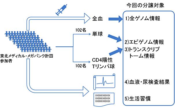図2:今回分譲を開始した匿名化データの概略