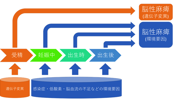 図1.脳性麻痺(脳性麻痺様疾患も含む)の原因と発生時期