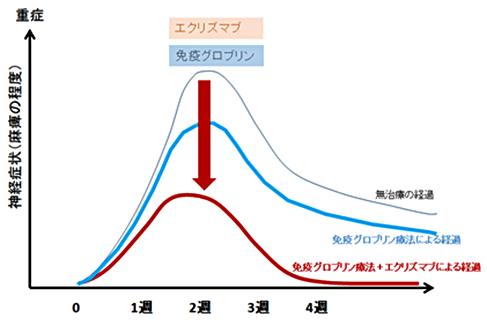 図3. ギラン・バレー症候群の治療経過(作業仮説)