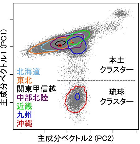図3 遺伝的背景に基づく日本人集団の分類