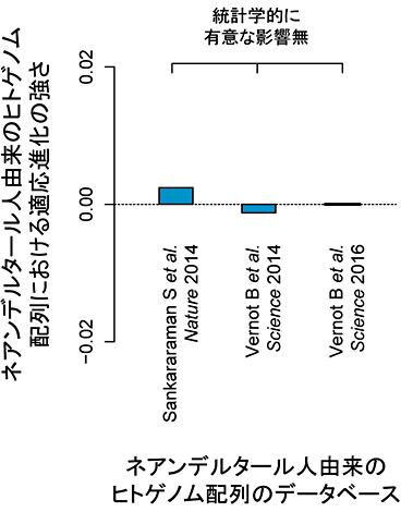 図5.ネアンデルタール人由来のヒトゲノム配列における適応進化の強さ