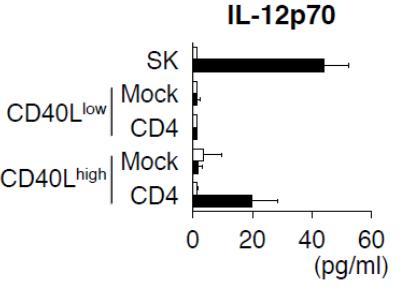 図2 各グループと共培養したときに樹状細胞が産生したIL-12p70(サイトカインの一種)の量。白いグラフが対照群、黒いグラフがb3a2を加えた群を示す。