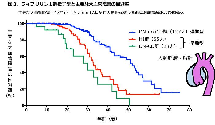 図3 フィブリリン1遺伝子型と主要な大血管障害の回避率