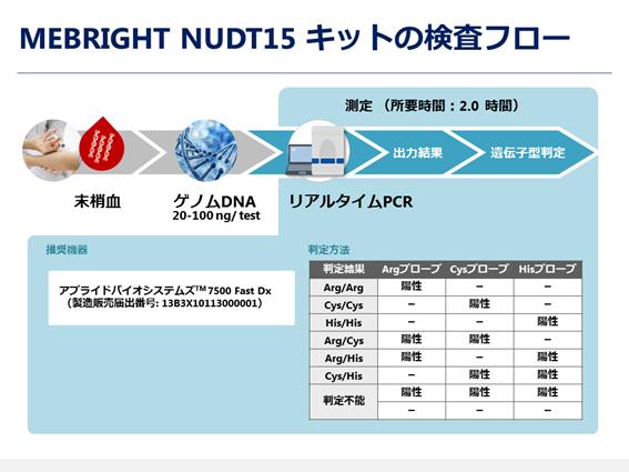 図5. MEBRIGHT NUDT15 キットの検査フロー