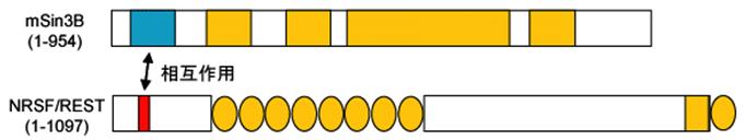 図1. REST
