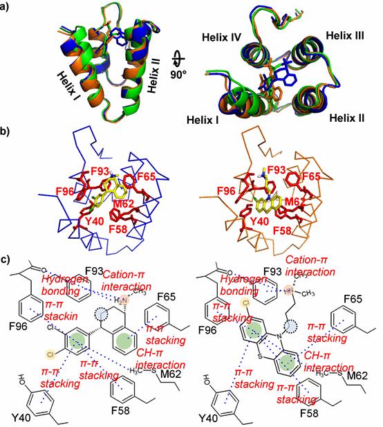 図4. mSin3薬剤複合体モデル構造