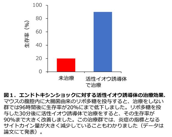 図1.エンドトキシンショックに対する活性イオウ誘導体の治療効果 マウスの腹腔内に大腸菌由来のリポ多糖を投与すると、治療をしない群では96時間後に生存率が20%にまで低下しました。リポ多糖を投与した30分後に活性イオウ誘導体で治療をすると、その生存率が90%まで大きく改善しました。この治療群では、炎症の指標となるサイトカイン量が大きく減少していることもわかりました(データは論文にて発表)。