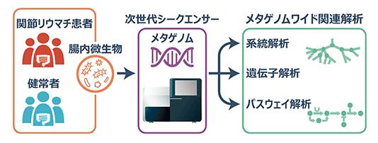 解析 メタゲノム 細菌叢解析受託・メタゲノム解析/メタ16S解析:口腔常在微生物叢解析センター