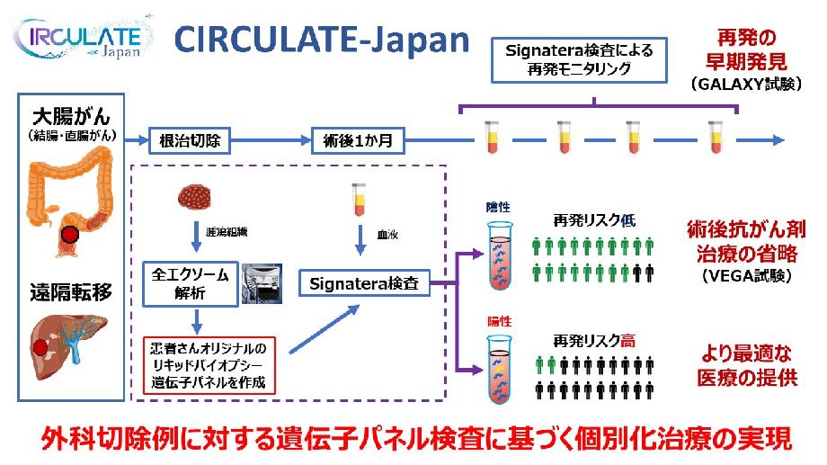 外科切除例に対する遺伝子パネル検査に基づく個別化治療の実現